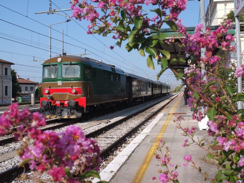 Tempus et Motus Express: un treno per la festa medioevale di Gemona
